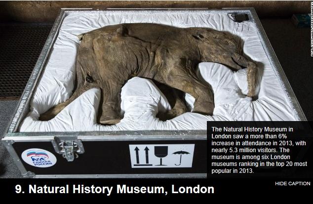 9. Natural History Museum, London.jpg