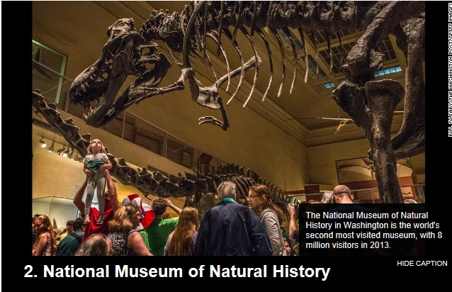 natural history washington 02.jpg