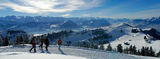 1000x370_winterwandern_rigi - 복사본.jpg